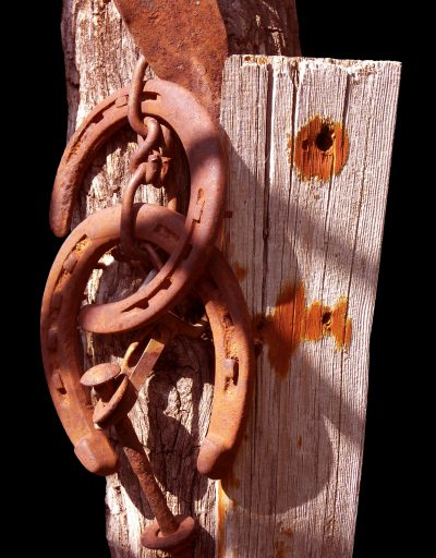 horseshoes-536987